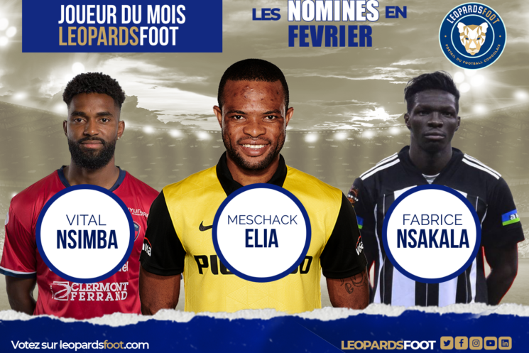 Votez pour le Léopard du mois de février!
